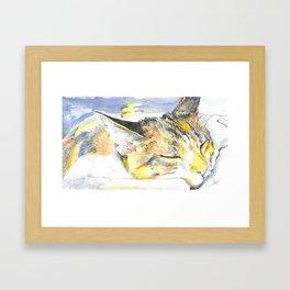 Sleeping Ohko Framed Art Print