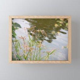 Facing the lake Framed Mini Art Print
