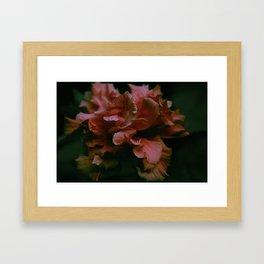 flowair Framed Art Print