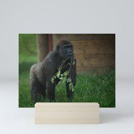 Lope The Gorilla Mini Art Print