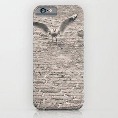 Bird2 iPhone 6s Slim Case