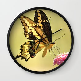 Giant Swallowtail Wall Clock