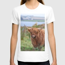 Long haired Highland cattle - Highland cow, Highlander, Heilan coo - Thurso, The Highlands, Scotland T-shirt