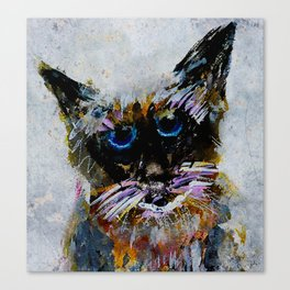 Old Cat Canvas Print