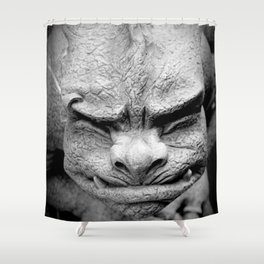 From A Dark Dream Shower Curtain