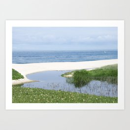 arrival of the brook into the sea Art Print