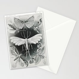 Scientific moth illustrations by Ernst Haeckel Stationery Cards