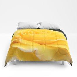My Yellow Rose Comforters