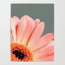 012 Flower Poster
