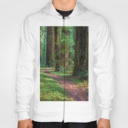 A Walk in the Redwoods Hoody