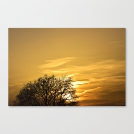 Sunset  behind Tree Canvas Print