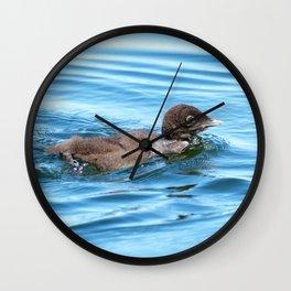 Baby loon solo swim Wall Clock