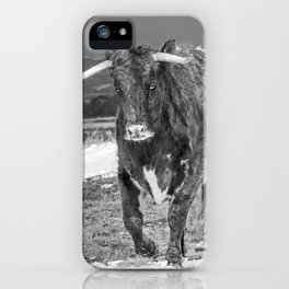 English Longhorn Black And White iPhone Case