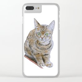 Sensitive Cat Clear iPhone Case