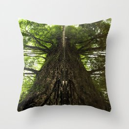 Creekside Reflection Throw Pillow
