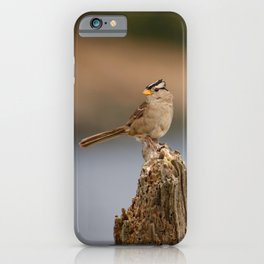 Checking things out! iPhone Case