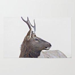 elk #society6 #decor #buyart Rug