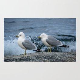 Seagulls, Norway Rug