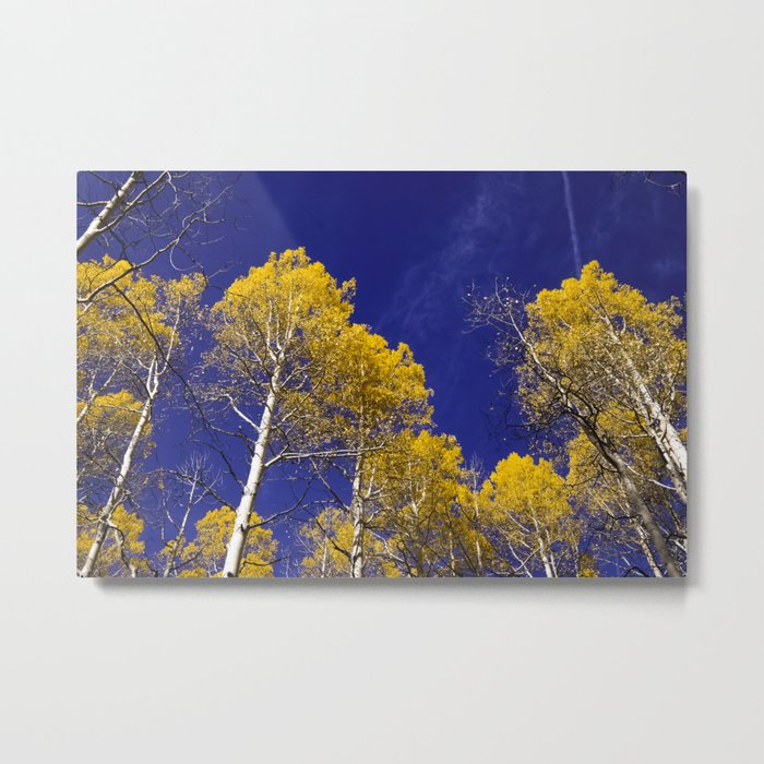 Nature's Golden Leaf Metal Print