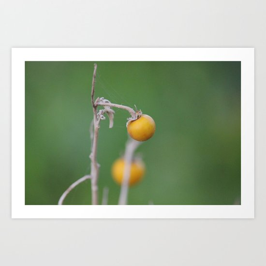 Gentle Touch Art Print
