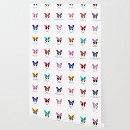 Butterflies 12 Wallpaper