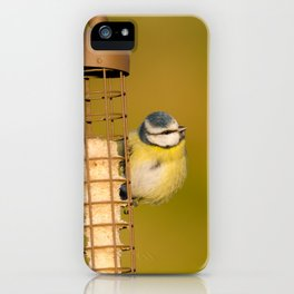 Blue tit on feeder iPhone Case