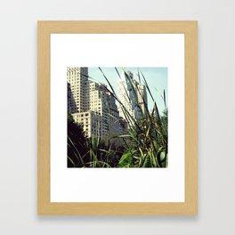 Central Park View Framed Art Print