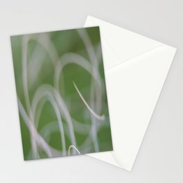 Abstract Image of Green Palm Leaves  Stationery Cards
