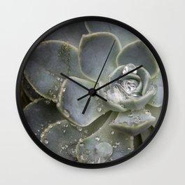 Desert Rose Water Drops Wall Clock