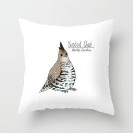 Banded Quail Throw Pillow