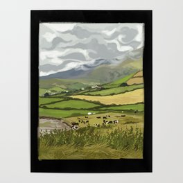 Cows in Dingle, Ireland Poster