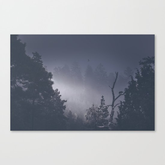 She stole something from me Canvas Print
