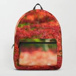 Resurrection Lilies Backpack