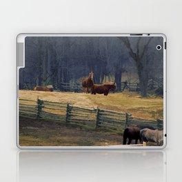 Wilderness Horse Ranch Laptop & iPad Skin