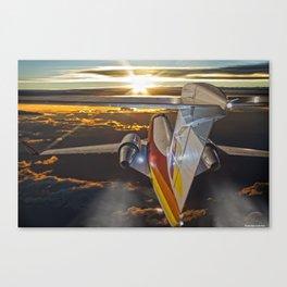 Flying at dawn Canvas Print