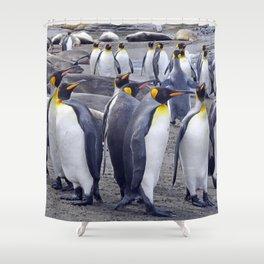 King Penguin Huddle Shower Curtain