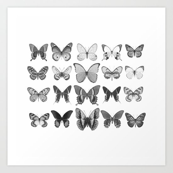 Mono Butterfly Collection by alysonfennellphotography