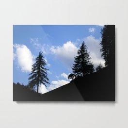 Dark Forest, Light Feeling Metal Print