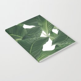 palm waves Notebook