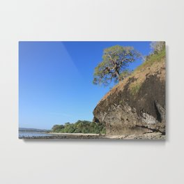 A Lonely Tree Metal Print