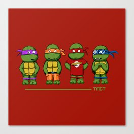 Turtle Theory Canvas Print