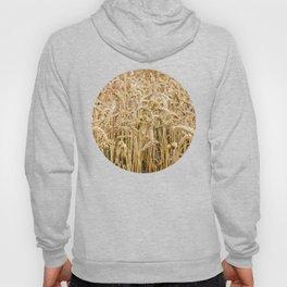 Golden Wheat Hoody