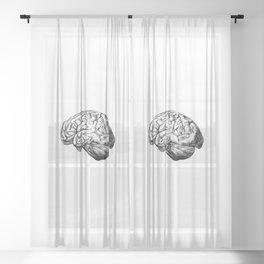 Brain Anatomy Sheer Curtain