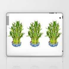Lucky Bamboo in Porcelain Bowl Laptop & iPad Skin