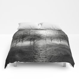 Black and White - Paisaje y color II Comforters