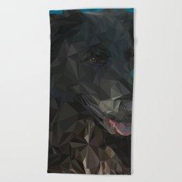 Barry Dog Beach Towel