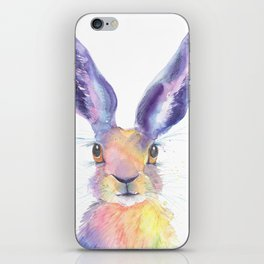 Rainbow Hare iPhone Skin