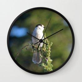 Gray Jay Wall Clock