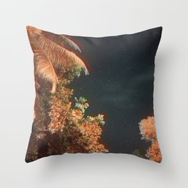 Seychellian palmtrees and the Milky Way Throw Pillow