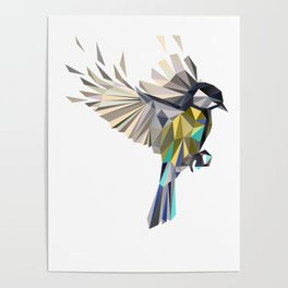Flying Songbird Cyanistes Caeruleus Blue Tit Bird Poster